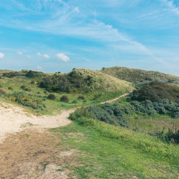 Wandelen: Noordhollands Duinreservaat