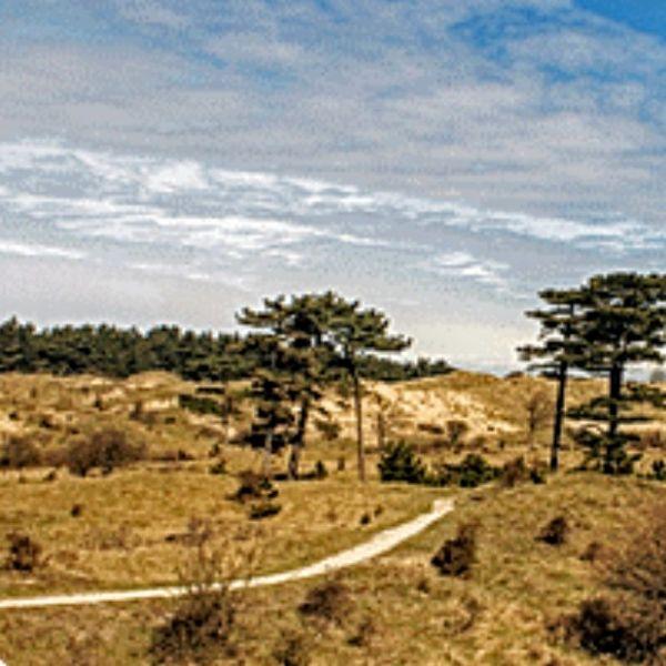 Wandelen Buitenplaatsenpad Zuid-Kennemerland