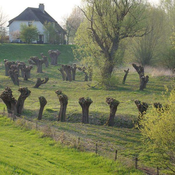 Westerborkpad 14