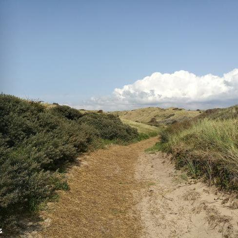 Weg van de Buis: Bakkum